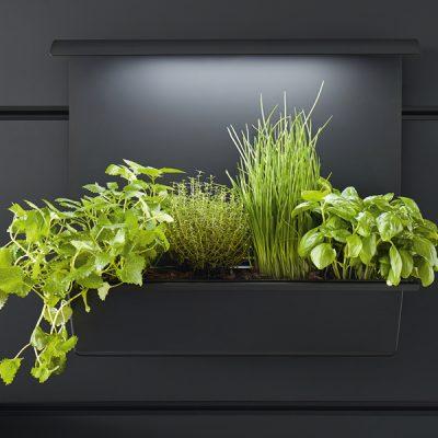 Wandpaneel mit Pflanzen